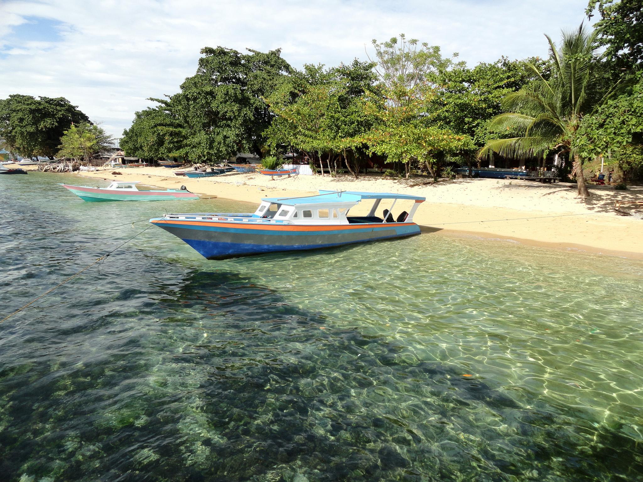 Plongée à Manado et Bunaken, Sulawesi, Indonésie