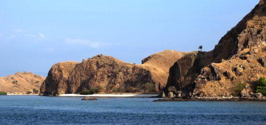 Ile Komodo Indonésie CC by sa Amelia Samulo
