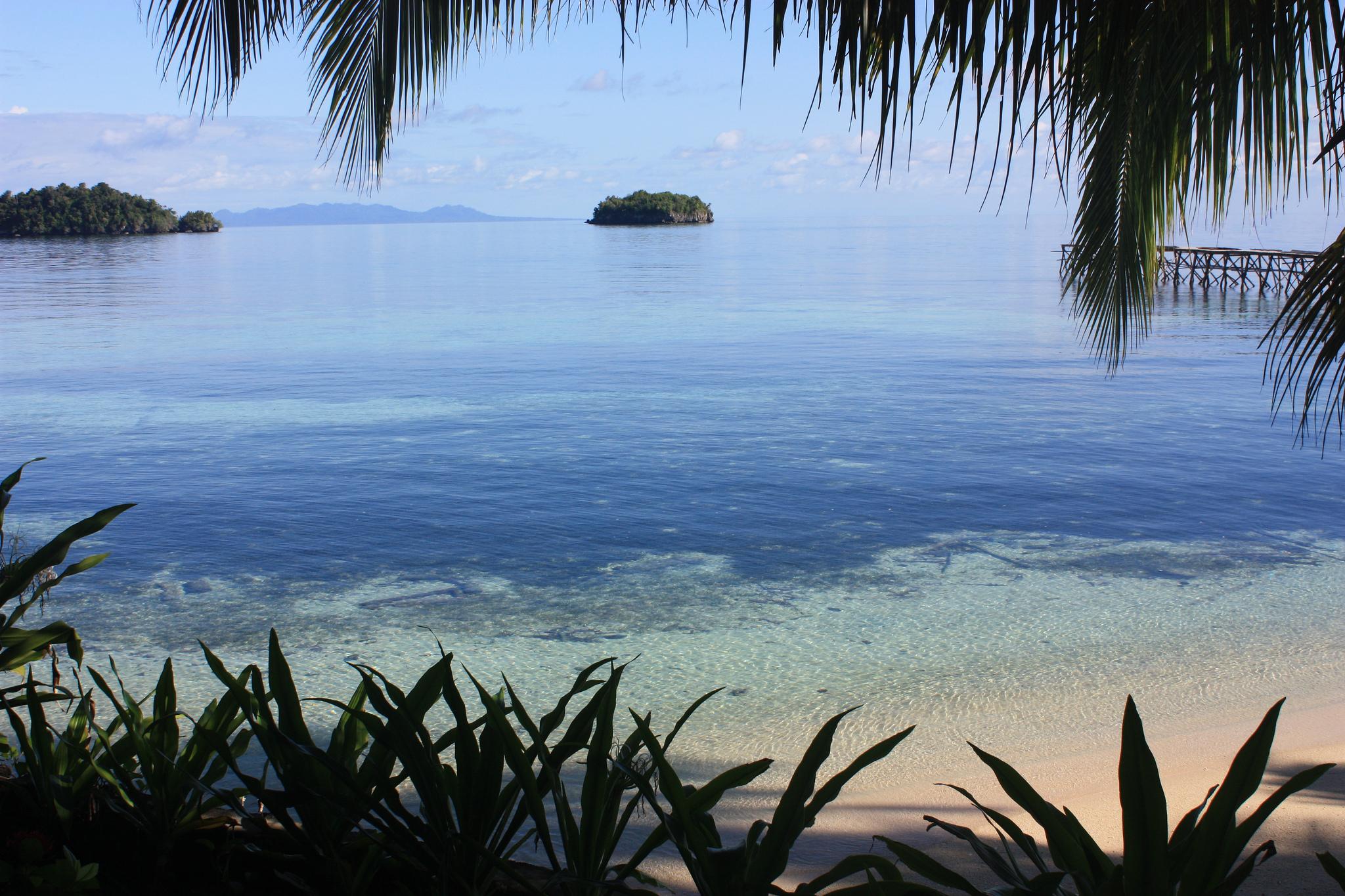 Plongée aux îles Togian, Sulawesi, Indonésie