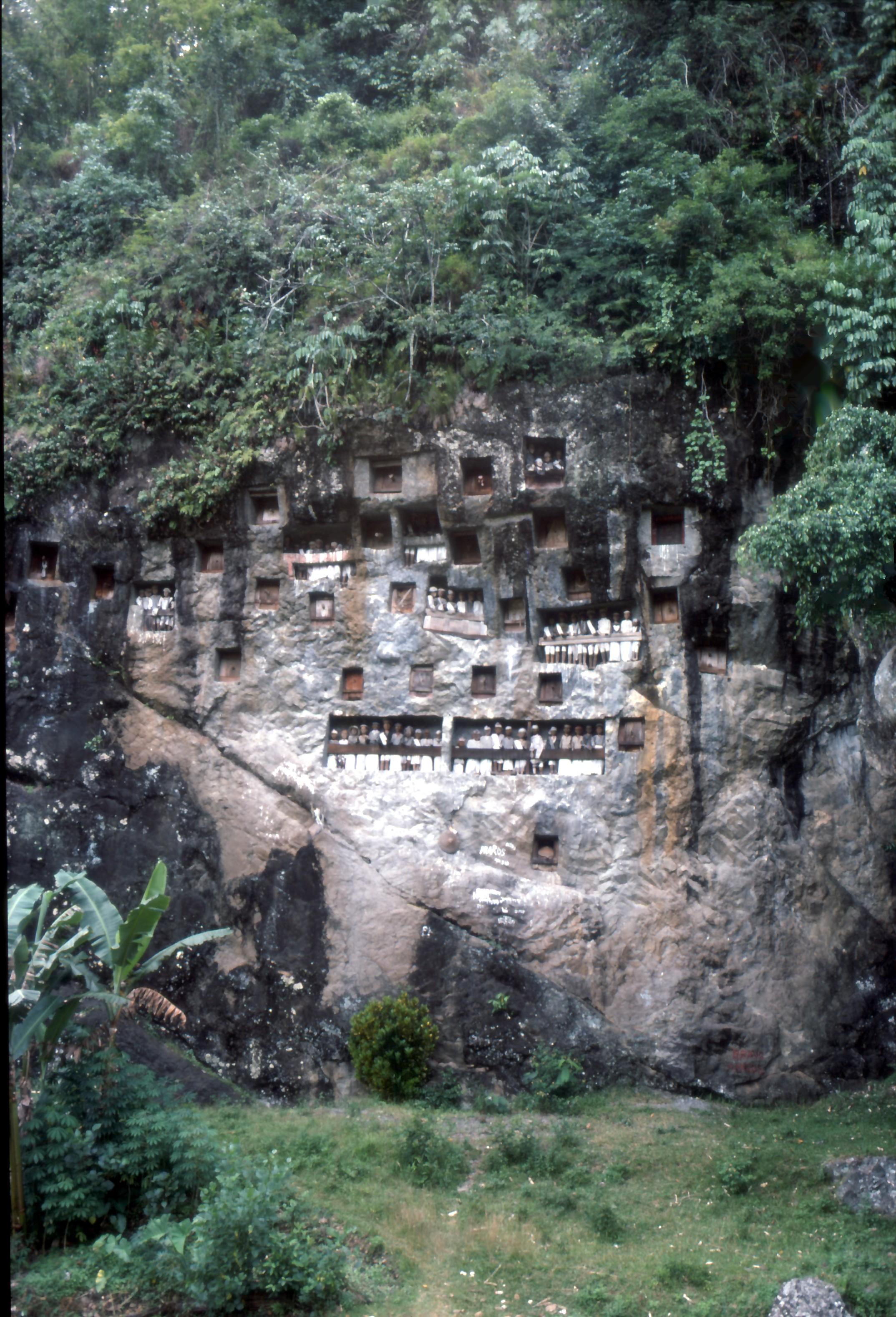 Les funérailles Toraja, Rantepao, Sulawesi, Indonésie