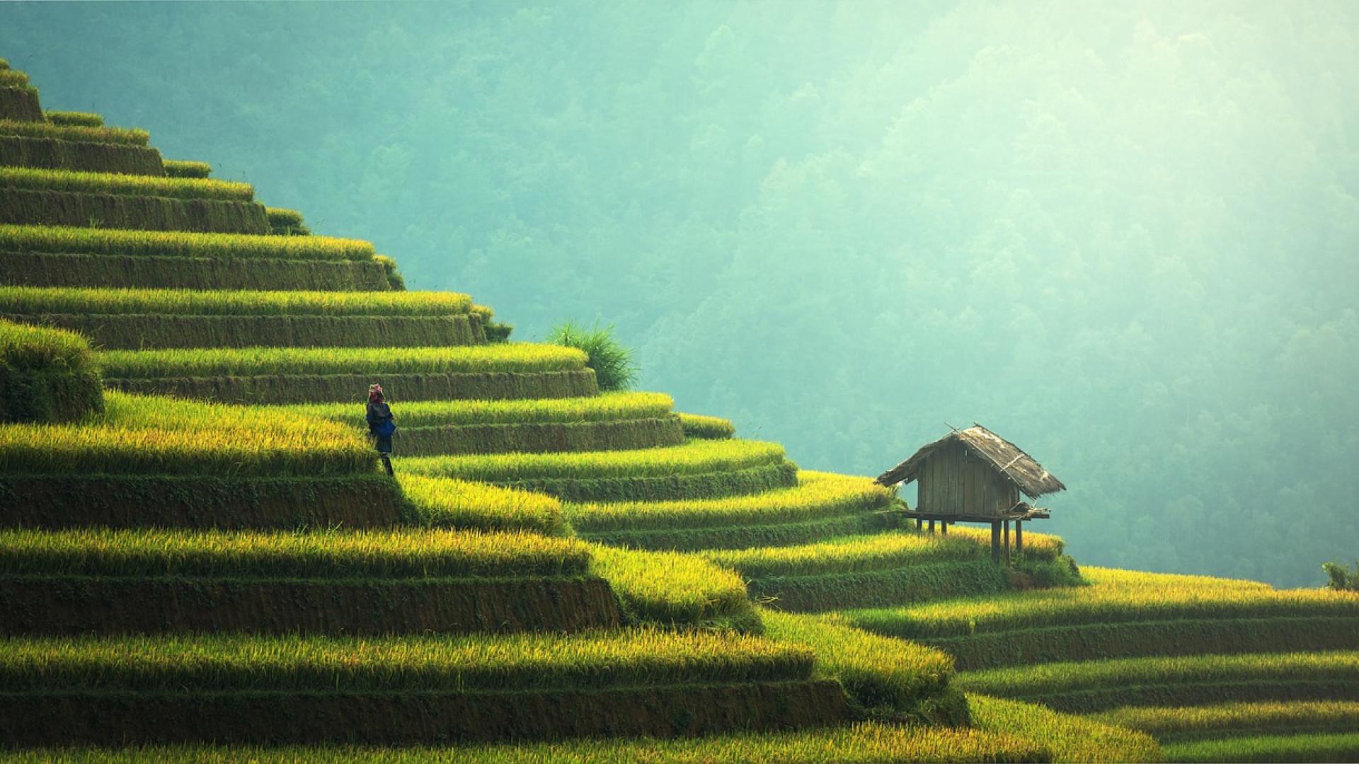 Préparez votre voyage en Thaïlande en réservant votre visa à l'avance